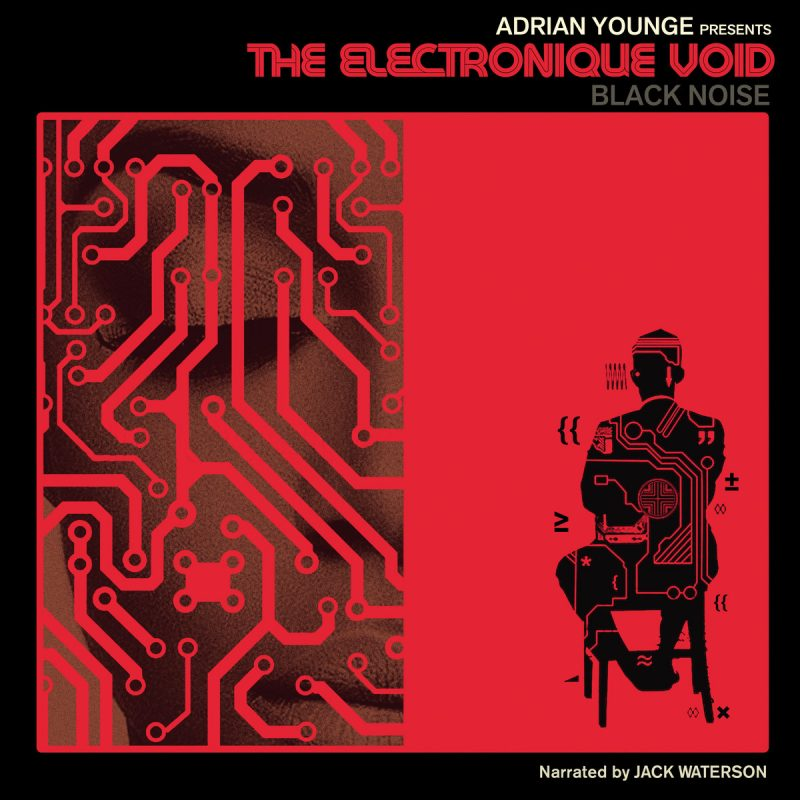 electronicvoidcover